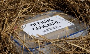 Geocache box hidden under some straw
